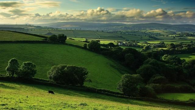 beautiful-farm-field