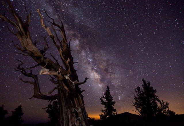 Astronomy-Photographer-of-002