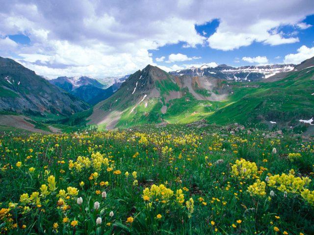 Yankee_Boy_Basin_Ouray_Colorado_1600_x_1200