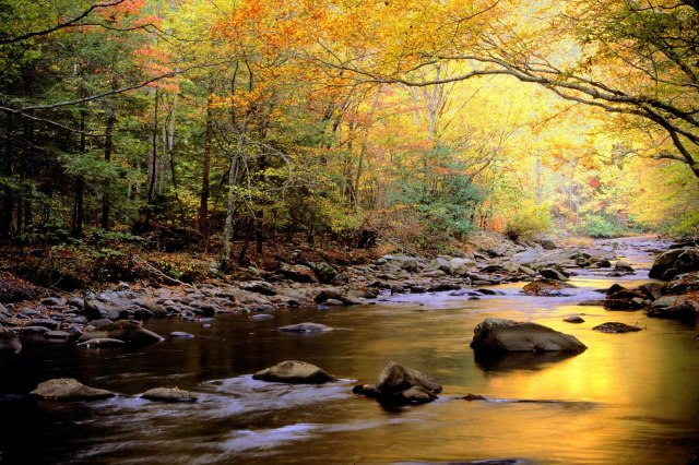 golden_waters__great_smoky_mountains_national_park__tennessee