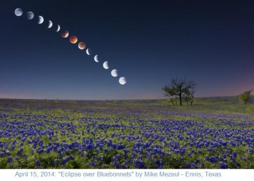2014_04-15-eclipse-over-bluebonnets