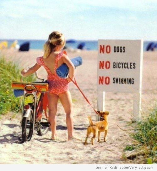beach-sign-no-dogs-bicycles-swimming-500x547