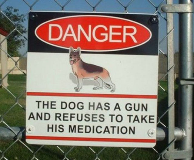 the-dog-has-a-gun